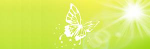 Healing, energetisch therapeut, saskia Tiemens, holistisch praktijk, energetische behandeling, hsp, hooggevoelig, klachten, genezing, heling