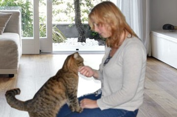 praktijk holistisch, welzijn voor dier en mens, healing, energetische behandeling