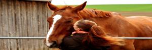 welzijn voor dier & mens, saskia tiemens, energetisch therapeut, healing dieren, coach, vrouw