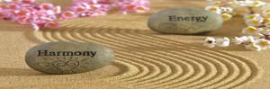energie, heling op afstand, welzijn voor dier en mens, saskia tiemens, energetisch therapeut, healer, reader, coach, hsp, hooggevoelig, sensitief, dieren, kat, hond, healing, balans, evenwicht, gidsen, licht