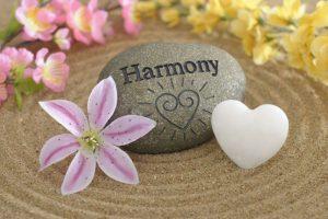 holistisch, healing welzijn voor dier en mens, saskia tiemens, energetisch therapeut, coach, healer, dieren, kat, hond, paard, vrouwen, hooggevoelig, sensitief, hsp