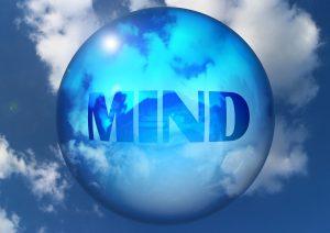 welzijn voor dier en mens, saskia tiemens, holistisch praktijk, coach, healer, bewustzijn, energetisch therapeut, dieren, hsp, heling, balans, liefde, licht, blog, blij, groei